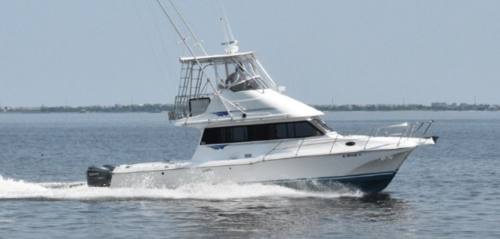 top-rated OBX fishing charters