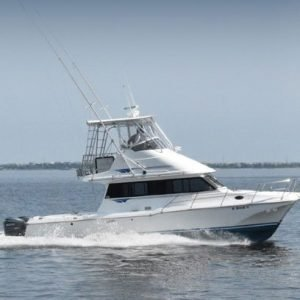 outer banks sound fishing charter