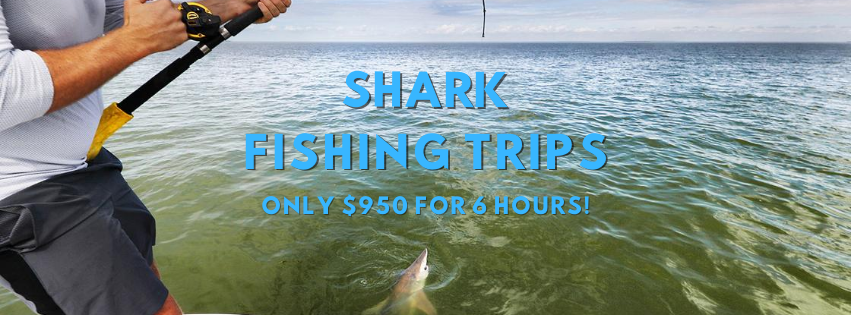 shark fishing trips in the outer banks